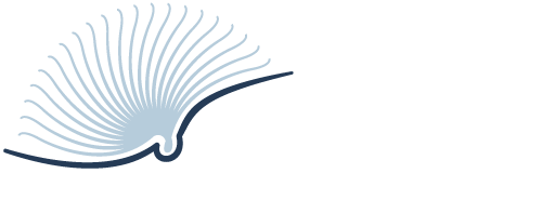 Top Free Books